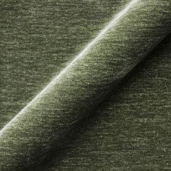 Textured Velvet: Lichen